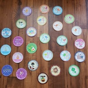 Infant Monthly Age & Holiday Stickers